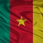 bandera camerun